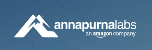 Annapurna Labs Logo